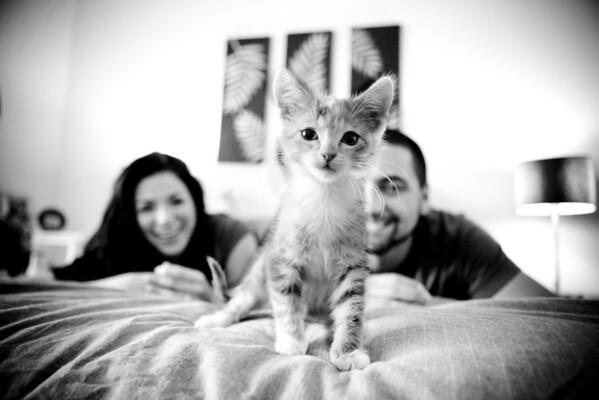 Briana + Shawn