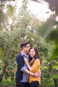 Montreal Wedding  Engagement Photographer Videographer | Vergers et Cidrerie Denis Charbonneau | Mont St. Gregoire | Lindsay Muciy Photography | 2016