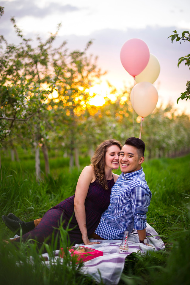Montreal Engagement Photographer Videographer | Montreal | Lindsay Muciy Photography |