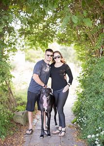 125 engagement dog