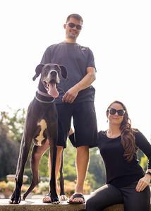 106 engagement dog