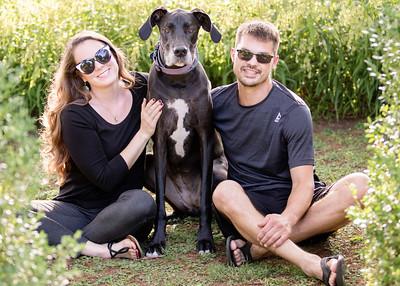 114 engagement dog