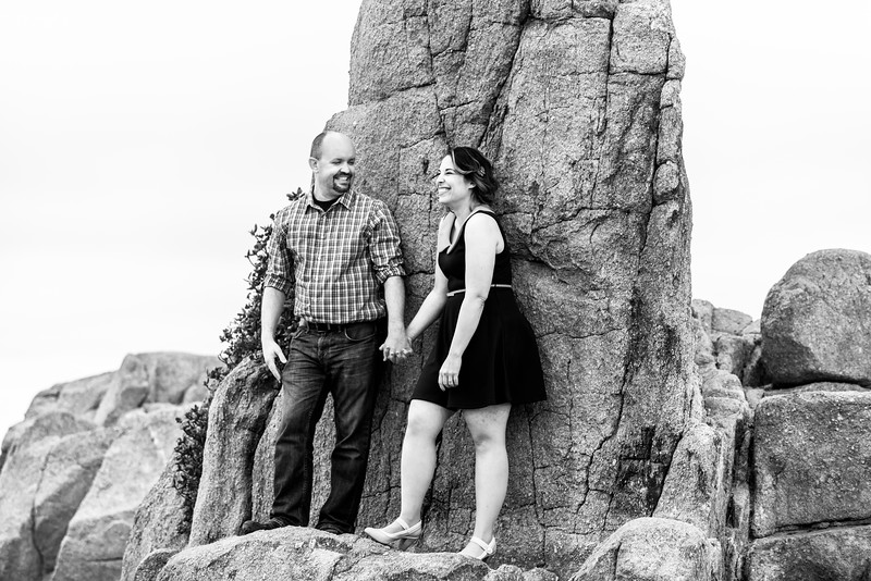 8817_d810_Hannah_and_Graham_Engagement_Pacific_Grove_Public_Library_Lovers_Point