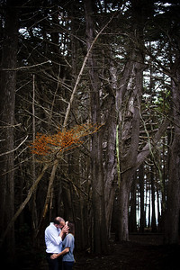 1636-d3_Monica_and_Ben_Fitzgerald_Marine_Reserve_Engagement_Photography