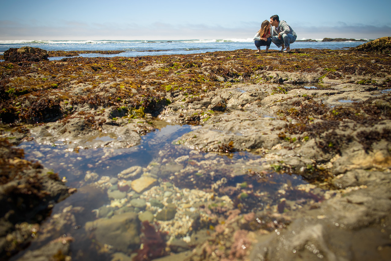 4516_d800a_Crystal_and_Ben_Fitzgerald_Marine_Reserve_Moss_Beach_Engagement_Photography