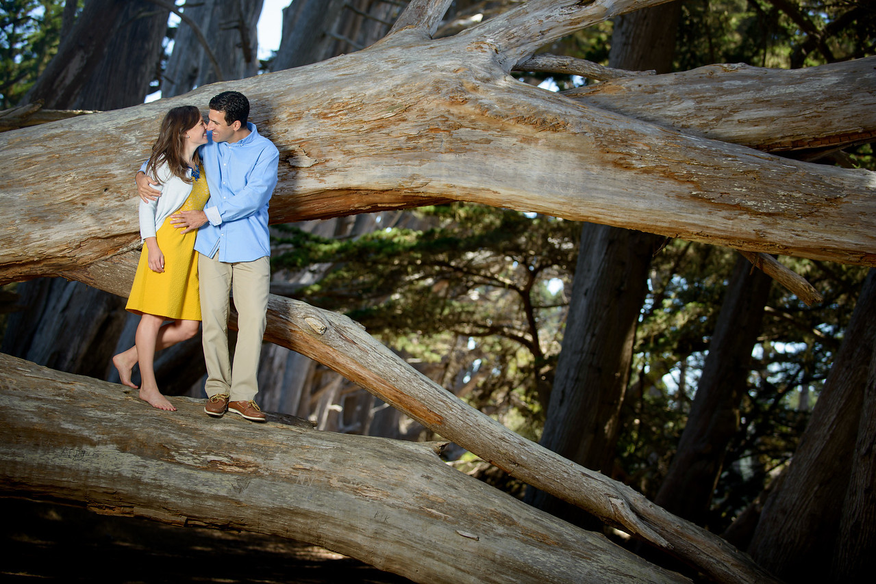 7769_d800b_Crystal_and_Ben_Fitzgerald_Marine_Reserve_Moss_Beach_Engagement_Photography