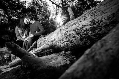 8586_d800b_Courtney_and_Robert_Natural_Bridges_Santa_Cruz_Engagement_Photography