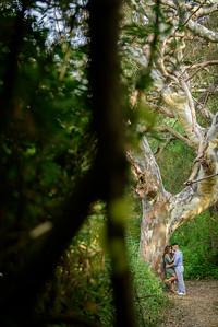 3591_d810a_Diana_and_Hector_Natural_Bridges_Santa_Cruz_Engagement_Photography