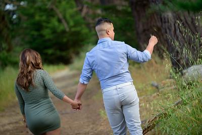 3626_d810a_Diana_and_Hector_Natural_Bridges_Santa_Cruz_Engagement_Photography