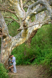 3588_d810a_Diana_and_Hector_Natural_Bridges_Santa_Cruz_Engagement_Photography