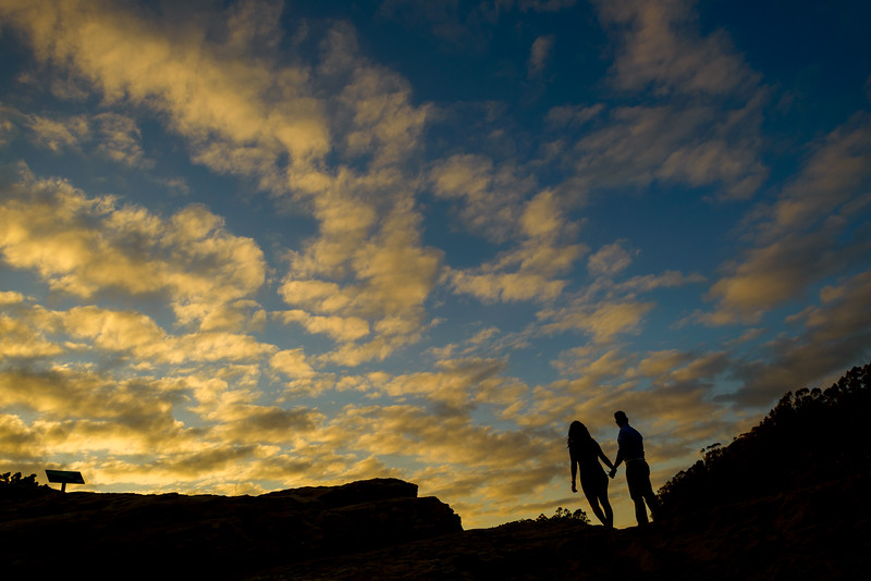 1948_d800b_Diana_and_Hector_Natural_Bridges_Santa_Cruz_Engagement_Photography