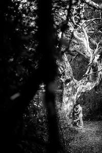 3590_d810a_Diana_and_Hector_Natural_Bridges_Santa_Cruz_Engagement_Photography