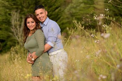 3526_d810a_Diana_and_Hector_Natural_Bridges_Santa_Cruz_Engagement_Photography