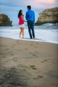 1072_d810a_Nivedita_and_Pratik_Natural_Bridges_Santa_Cruz_Engagement_Photography