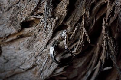 1076_d810a_Nivedita_and_Pratik_Natural_Bridges_Santa_Cruz_Engagement_Photography