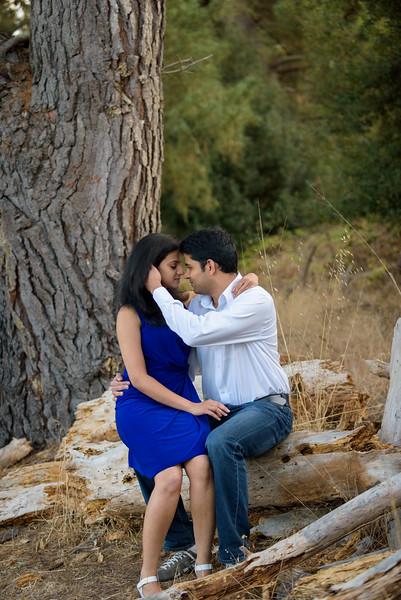 0923_d810a_Nivedita_and_Pratik_Natural_Bridges_Santa_Cruz_Engagement_Photography