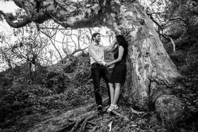 6196_d800b_Nivedita_and_Pratik_Natural_Bridges_Santa_Cruz_Engagement_Photography