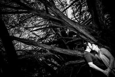 7850_d800a_Liz_and_Scott_Pfeiffer_Beach_Big_Sur_Engagement_Photography
