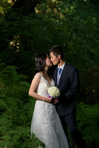 3795_d810_Qiru_and_Yu_Henry_Cowell_Felton_and_Natural_Bridges_Santa_Cruz_Bridal_Portrait_Photography