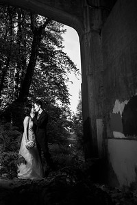 2977_d810_Qiru_and_Yu_Henry_Cowell_Felton_and_Natural_Bridges_Santa_Cruz_Bridal_Portrait_Photography
