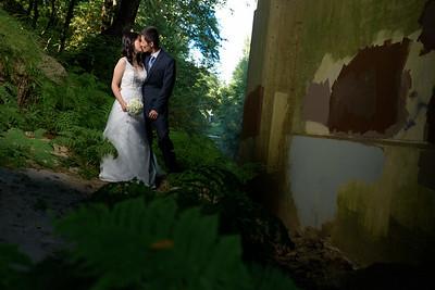 2972_d810_Qiru_and_Yu_Henry_Cowell_Felton_and_Natural_Bridges_Santa_Cruz_Bridal_Portrait_Photography