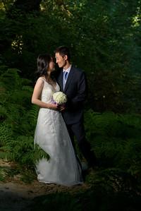 3797_d810_Qiru_and_Yu_Henry_Cowell_Felton_and_Natural_Bridges_Santa_Cruz_Bridal_Portrait_Photography