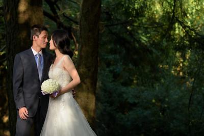 3787_d810_Qiru_and_Yu_Henry_Cowell_Felton_and_Natural_Bridges_Santa_Cruz_Bridal_Portrait_Photography
