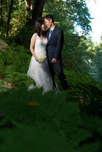 2971_d810_Qiru_and_Yu_Henry_Cowell_Felton_and_Natural_Bridges_Santa_Cruz_Bridal_Portrait_Photography