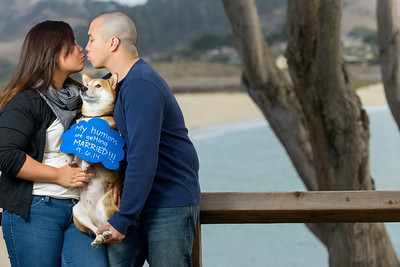 9639_d800b_Evelyn_and_Lon_Stewarts_Cove_Carmel_Engagement_Photography