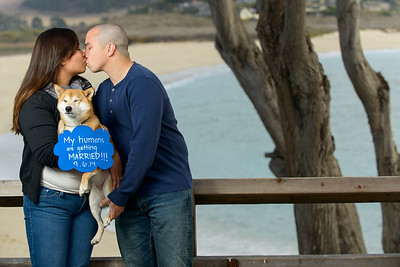 9633_d800b_Evelyn_and_Lon_Stewarts_Cove_Carmel_Engagement_Photography
