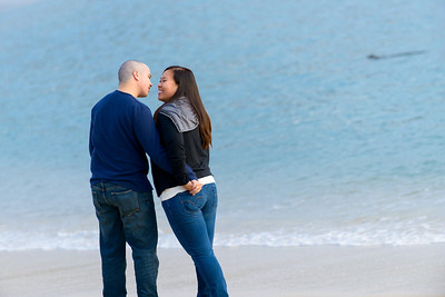 9681_d800b_Evelyn_and_Lon_Stewarts_Cove_Carmel_Engagement_Photography