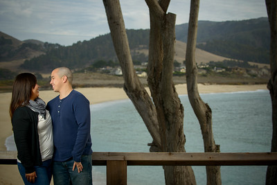 9653_d800b_Evelyn_and_Lon_Stewarts_Cove_Carmel_Engagement_Photography