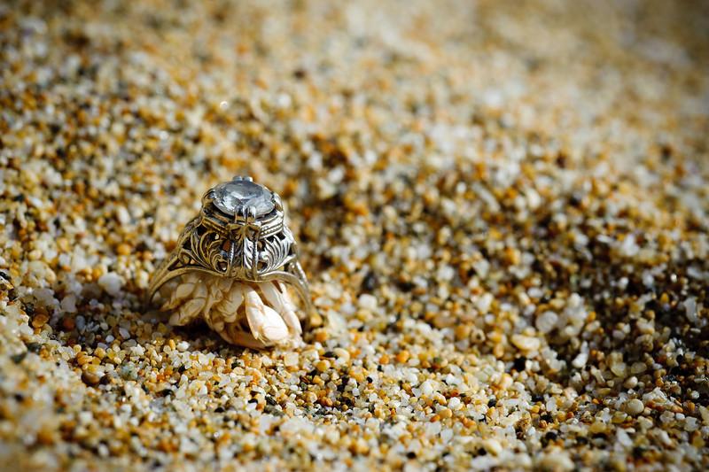 2845-d3_Jared_Jasmine_Bay_Area_Engagement_Photography