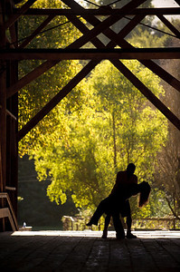 8954-d3_Noel_and_Marin_Felton_Engagement_Photography_Covered_Bridge_Park_Henry_Cowell