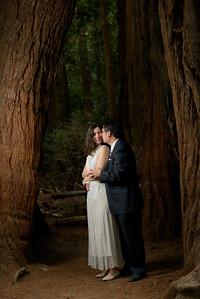 3137_d810a_Alex_and_Yee_Henry_Cowell_Park_Felton_Wedding_Bridal_Portrait_Photography