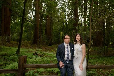 0186_d800b_Alex_and_Yee_Henry_Cowell_Park_Felton_Wedding_Bridal_Portrait_Photography