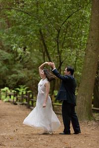 3119_d810a_Alex_and_Yee_Henry_Cowell_Park_Felton_Wedding_Bridal_Portrait_Photography