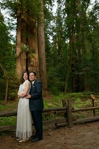 0200_d800b_Alex_and_Yee_Henry_Cowell_Park_Felton_Wedding_Bridal_Portrait_Photography