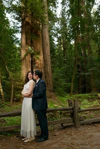 0194_d800b_Alex_and_Yee_Henry_Cowell_Park_Felton_Wedding_Bridal_Portrait_Photography