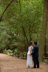 3112_d810a_Alex_and_Yee_Henry_Cowell_Park_Felton_Wedding_Bridal_Portrait_Photography