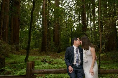 0187_d800b_Alex_and_Yee_Henry_Cowell_Park_Felton_Wedding_Bridal_Portrait_Photography