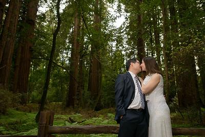 0184_d800b_Alex_and_Yee_Henry_Cowell_Park_Felton_Wedding_Bridal_Portrait_Photography