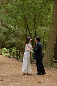 3120_d810a_Alex_and_Yee_Henry_Cowell_Park_Felton_Wedding_Bridal_Portrait_Photography