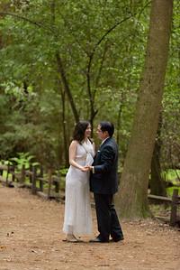 3121_d810a_Alex_and_Yee_Henry_Cowell_Park_Felton_Wedding_Bridal_Portrait_Photography
