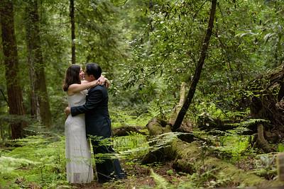 3126_d810a_Alex_and_Yee_Henry_Cowell_Park_Felton_Wedding_Bridal_Portrait_Photography