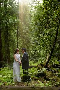 3122_d810a_Alex_and_Yee_Henry_Cowell_Park_Felton_Wedding_Bridal_Portrait_Photography