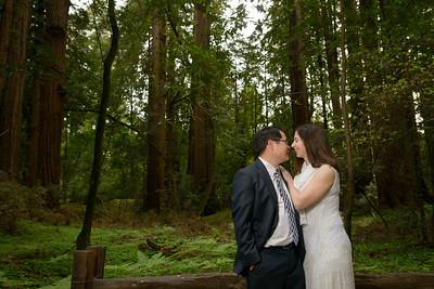 0180_d800b_Alex_and_Yee_Henry_Cowell_Park_Felton_Wedding_Bridal_Portrait_Photography