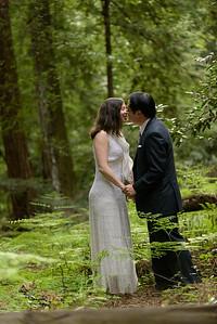 3124_d810a_Alex_and_Yee_Henry_Cowell_Park_Felton_Wedding_Bridal_Portrait_Photography