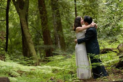 3129_d810a_Alex_and_Yee_Henry_Cowell_Park_Felton_Wedding_Bridal_Portrait_Photography