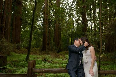 0189_d800b_Alex_and_Yee_Henry_Cowell_Park_Felton_Wedding_Bridal_Portrait_Photography